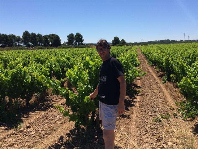 Altavins Viticultors