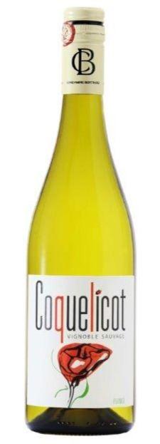 Coquelicot blanc 'Vignoble Sauvage'